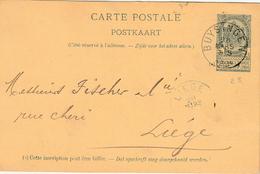 "ENTIER BELGIË Nr. 23 ""BUYSINGEN 28 MARS 1894"" Met Privaatopdruk / Repiquage ""PAPETERIES  De HUYSSINGHEN / G. DEMEURS "" - Stamped Stationery"