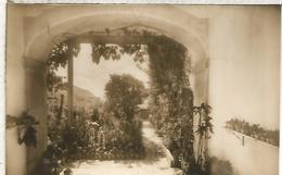 VALLDEMOSA CARTUJA SIN ESCRIBIR - Mallorca