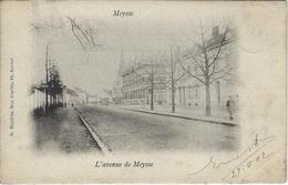 Meysse    -   L'avenue De Meysse   -   (in Hoek Een Plooitje)  1902   Naar  Etterbeek - Meise