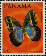 USED STAMPS Panama - Butterflies-1968 - Panama
