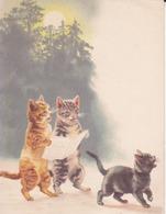 Carte Légèrement Embossée, Trois Chats - Cats