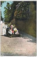 32048. Postal MADEIRA (Portugal). Mount Slegde.  Bajada De Carretones - Madeira