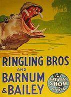 @@@ MAGNET - RINGLING BROS. BARNUM & BAILEY, Hippo - Publicitaires