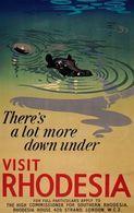 @@@ MAGNET - Visit Rhodesia, Hippo - Publicitaires