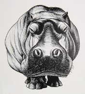 @@@ MAGNET - Hippo - Publicitaires