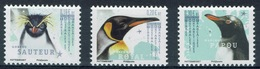 French Antarctic (FSAT), Penguins, 2019, MNH VF  Complete Set Of 3 - French Southern And Antarctic Territories (TAAF)