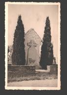 Lier - Originele Fotokaart - Graf Van Ernest Van Der Hallen - 1956 - Lier