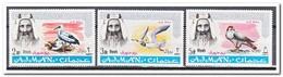 Ajman 1967, Postfris MNH, Birds Overprint - Ajman