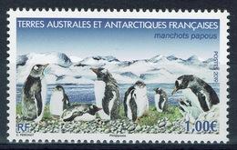 French Antarctic (FSAT), Gentoo Penguin (Pygoscelis Papua), 2019, MNH VF - Unused Stamps