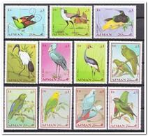 Ajman 1969, Postfris MNH, Birds ( 1 Value Is MH, 1 Waarde Met Plakker ) - Ajman