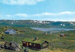 1 AK Norwegen * Die Landschaft Um Den Ort Ustaoset - In Der Provinz Buskerud * - Norwegen