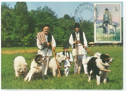 Romania 1982 Dog Chien Maximum Card 1V - Cani