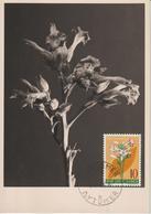 Yougoslavie Carte Maximum Fleurs 1955 Tabac 668 - Cartes-maximum