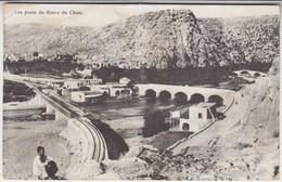Les Ponts Du Fleuve Du Chien - Siria