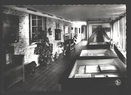 Damme - Museum St. Jan - Toonzaal Der Antikwiteiten - Fotokaart - Damme