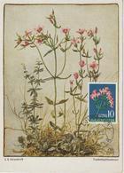 Yougoslavie Carte Maximum Fleurs 1957 Centaurée 714 - Cartes-maximum