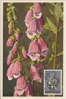 Yougoslavie Carte Maximum Fleurs 1957 Digitale 719 - Cartes-maximum