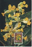 Yougoslavie Carte Maximum Fleurs 1959 Primevère 789 - Cartes-maximum