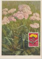 Yougoslavie Carte Maximum Fleurs 1965 Archillée Mille Feuilles 1013 - Cartes-maximum