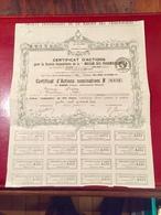 Sté  Immobilière  De  La  MAISON  Des  PHARMACIENS  -------Certificat  D' Actions  Nominatives  De  100 Frs - Non Classés