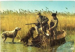 Chasse Aux Canards - Hunting