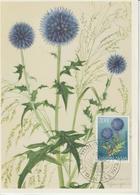 Yougoslavie Carte Maximum Fleurs 1973 Chardon 1397 - Cartes-maximum