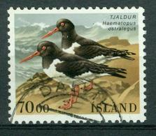 BM Island 1987 | MiNr 670 | Used | Vögel, Austernfischer - 1944-... Republik