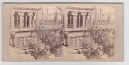 Stereoscopische Kaart. The Chystal Palace Art Union Of 1859.    Jardin Des Indes - Cartes Stéréoscopiques