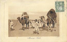 Afrique Du Nord - Scènes Et Types: Mariage Arabe Avec Chameaux - Carte De Luxe LL N° 6380 - Afrique