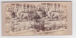 Stereoscopische Kaart. The Chystal Palace Art Union Of 1859.   Entrée Du Côté Du Palais D'afsyrie - Cartes Stéréoscopiques