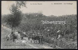 La Corrèze Illustrée  51. BEAULIEU - Les Vendanges - Autres Communes