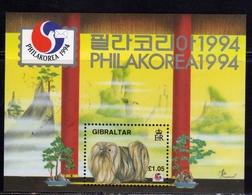 GIBRALTAR GIBILTERRA 1994 INTERNATIONAL STAMP EXHIBITION SEOUL SEUL BLOCK SHEET BLOCCO FOGLIETTO BLOC MNH - Gibilterra