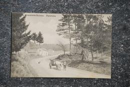 1596/ Avenaterre-Bodeux.(rare)Panorama - Attelage Boeuf- - Trois-Ponts