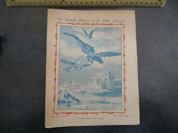 """Ancien Protège-cahier Couverture """"L'AIGLE, SOUVERAIN DES AIRS"""" - Protège-cahiers"""