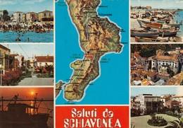 12294-SALUTI DA SCHIAVONEA(COSENZA)-FG - Saluti Da.../ Gruss Aus...