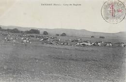 Maroc)  TAOURIRT  -  Camp Des Maghzen - Maroc