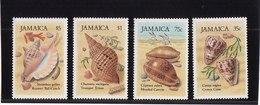 Jamaïque Coquillages - Jamaique (1962-...)