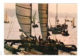 Bords De Mer - Voiliers - CPM - 20 - Velieri