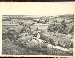 Cpsm Chassepierre Sur Semois   1954 - Florenville
