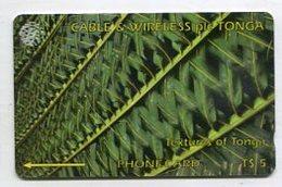 TK 00630 TONGA - 261CTGA.../B Textures Of Tonga - Tonga