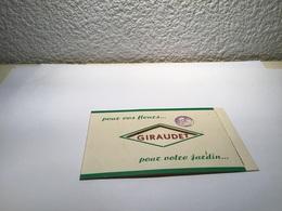 Carte De Visite Fleurs  Saint-Étienne  Baptême Fiançailles - Visiting Cards
