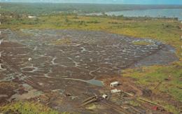 R068976 Pitch Lake. Trinidad. W. I. Dexter - Cartes Postales