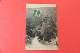 01 Nantua Chemin De La Vierge Et Le Signal 1910 - Sonstige Gemeinden
