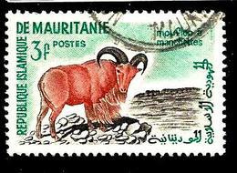 MAURITANIE 143° 3f Vert-bleu, Sépia Et Rouge Activités Traditionnelles Et Animaux Mouflon à Manc (10% De La Cote + 0,15) - Mauritanie (1960-...)