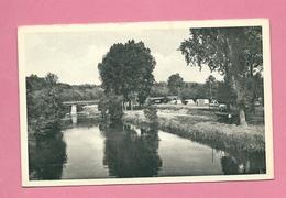 C.P. Wanlin Sur Lesse  = Le  Camping  Et  Le Pont - Houyet