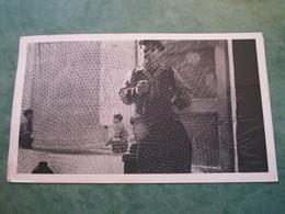 Engin De Pêche Maltais (publicité Au Verso) - Malte