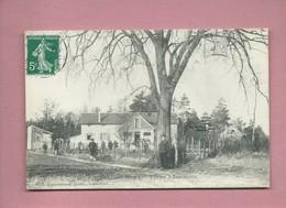 CPA - Liancourt - (Oise) - L'Arbre à Saucissons  ( Arbres , Arbre  ) - Liancourt