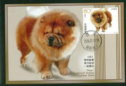 China 2006 Dog Chien Maximum Card 1V - Cani