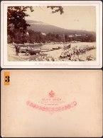 CROATIA - HRVATSKA  - OPATIJA  ABBAZIA  Port And Large Mules - Edit A. Beer Klagenfurt - 1886 - RARE - Croatie