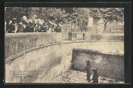 AK Bern, Kaiser Wilhelm II. Am Bärengehege Im Zoo - Königshäuser